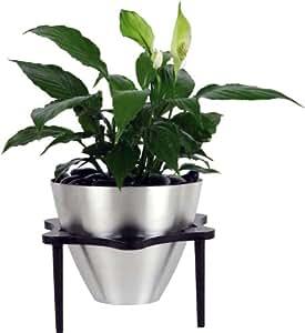 Oso polar indoor tabletop planter kit for Indoor gardening amazon