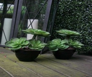 Testrut 601284 Artificial Lotus Plant in Ceramic Pot Diameter 13 cm Height 17 cm Black