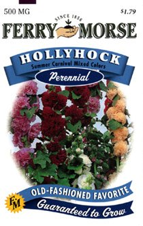 Ferry-Morse Perennial Flower Seeds 1577 Hollyhock - Summer Carnival Mixed Colors 500 Milligram Packet