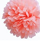 NO1 10 Pack Tissue Paper Flower Ball Pom poms For Party Wedding Home Decoration Pink