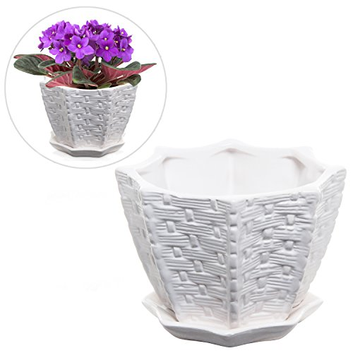 Decorative Woven Design Star Shaped White Ceramic Flower Plant Pot / Succulent Display Planter Container
