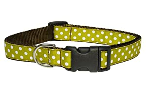 Sassy Dog Wear 10-14-Inch Moss/White Polka Dot Dog Collar, Small