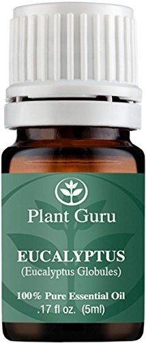 Eucalyptus Essential Oil. 5 ml. 100% Pure, Undiluted, Therapeutic Grade. Sample Size