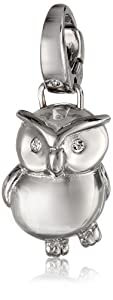 Fossil Owl Silver Charm