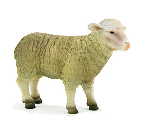 White Face Sheep (Ewe) by Mojo