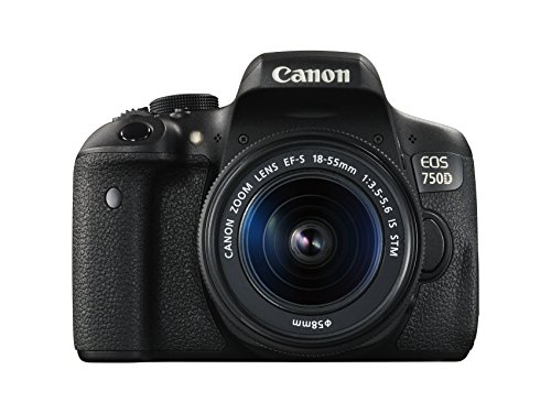 Canon EOS 750D Digital SLR Camera with 18-55mm IS STM - International Version (No Warranty)