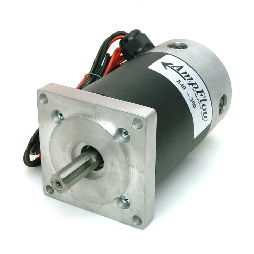 Ampflow A40-300 Brushed Electric Motor, 12V, 24V, Or 36V Dc, 4000 Rpm