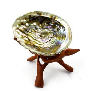 Abalone Shell & 6″ Wooden Tripod – Incense Holders