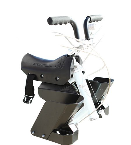 New Co-Rider Child Bike Seat, Black