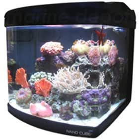 JBJ 6 Gallon Nano Cube Aquarium with (2) Nite-Vu LED Moonlights