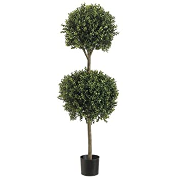 4 Double Ball-shaped Boxwood Topiary in Plastic Pot Two Tone Green