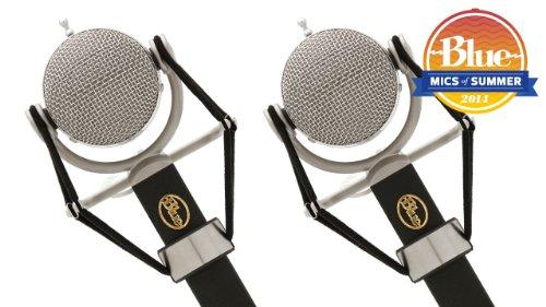 Blue Microphones Dragonfly Pair - Promo Bundle