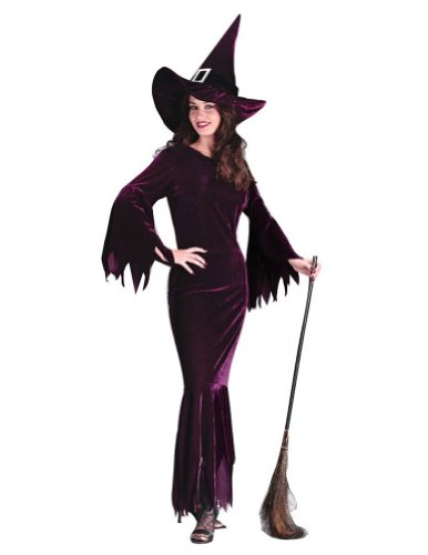 Adult-Costume Witch Elegant Plum Sm-Md Halloween Costume
