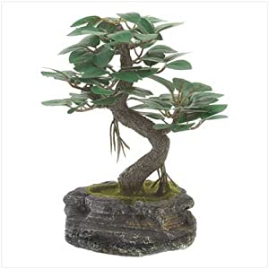 Everlasting Bonsai Tree - Style 39677