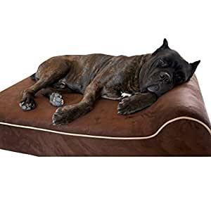 Amazon.com : Bully Beds Orthopedic Memory Foam, Waterproof