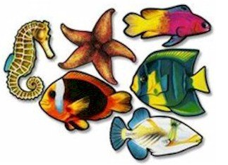 Pets Unleashed Fish Cutouts