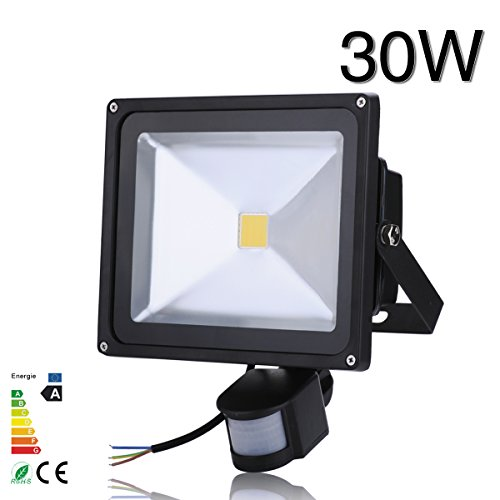 30W Popular Led Pir Motion Sensor Flood Light Ip65 Warm White Induction Lamp