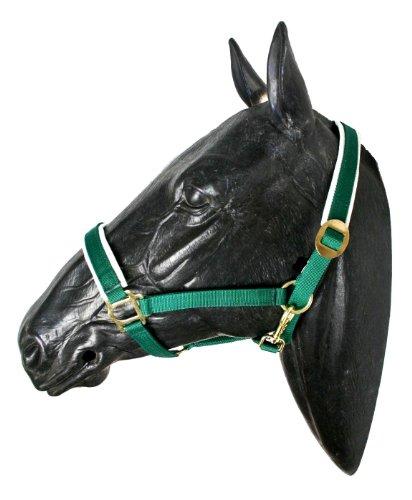 Deluxe Nylon-Halfter, Warmblut, grün