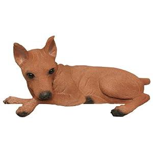 Amazon.com: Miniature Pinscher Red Collectible Dog Figurine Door and