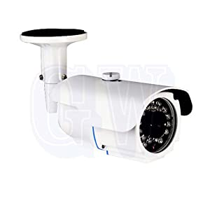 GW Security GW25WD Professional 700TVL 1/3-Inch Sony Super HAD CCD II Outdoor Security Camera (White)