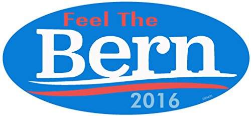 BUMPER STICKER: 'Feel The Burn' - Bernie Sanders. Vinyl 3.5