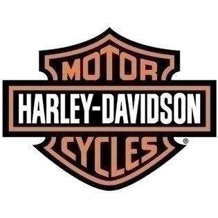 Dunlop? Harley-Davidson? Tire Series - D408F 130/80B17 - 17 Front
