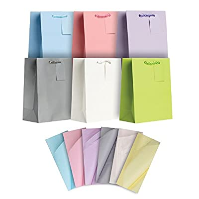 Jillson Roberts All-Occasion Medium Gift Bags and Tissue in Assorted Solid Colors, 6-Count, Pastels (STMT002)