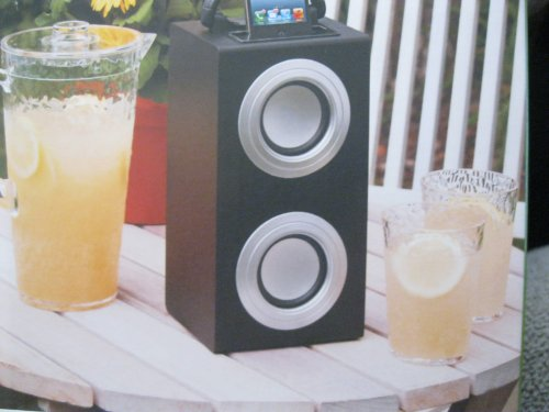 Portable Boom Box Speaker