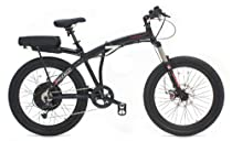 Prodeco Technologies Phantom X2 Electric Folding Bicycle (36V, 500W)