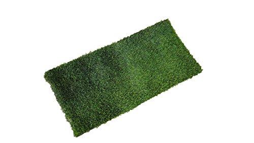 fresh-patch-real-grass-training-sod-as-seen-on-shark-tank-48-l-x-24-w