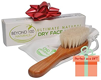 Best Dry Skin Face Brush with Natural Bristles and Wet Face Brush Set to Exfoliate and Detox for Healthy & Beautiful Skin - Improve Circulation - Perfect Gift - Buy Now