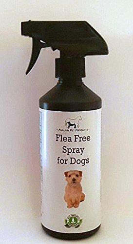 -livraison-gratuite-application-100-naturel-contre-les-puces-et-tiques-spray-pour-chiens