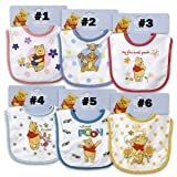 Winnie the Pooh and Friends Baby Bibs (#2)