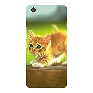 Back cover for OnePlus X Kitten