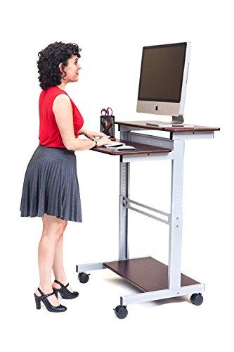 """32"""" Mobile Ergonomic Stand Up Desk Computer Workstation (Dark Walnut Shelves With Silver Frame)"""