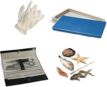 Student Dissection Kit