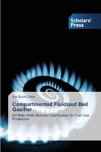 Compartmented Fluidized Bed Gasifier: Oil Palm