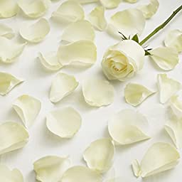 Farm Fresh Natural White Rose Petals - 3000 petals