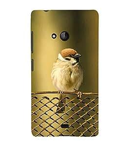 KOOKABURRA BIRD A BEAUTIFUL CREATION OF NATURE 3D Hard Polycarbonate Designer Back Case Cover for Nokia Lumia 540 :: Microsoft Lumia 540