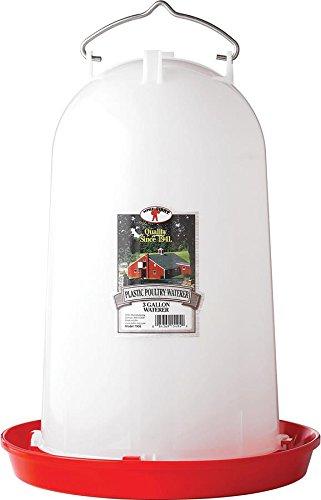 Little Giant 3 Gallon Poultry Waterer  7906