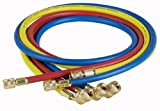 Robinair (69060A) Enviro-Guard Hose Set with 45° Quick Seal Fittings - 60