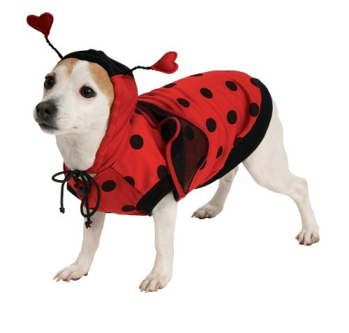 Lady Bug Pet Costume, Small - 1
