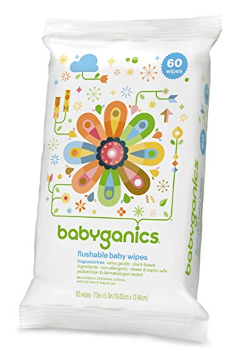 Babyganics Flushable Baby Wipes, Fragrance Free, 60 Count (Pack Of 3, 180 Total Wipes) front-20255