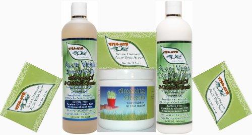 Aloe Vera Gift Pack - Large 14 Oz Aloe Vera Natural Shampoo & 14 Oz Conditioner & 3 Bars Aloe Vera Handmade Soap With Amazing Greens Energy Pack! Vegan And Gluten Free!