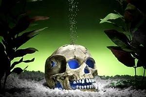 europet bernina aquarium deko totenkopf skull mit led beleuchtung aquariumdeko haustier. Black Bedroom Furniture Sets. Home Design Ideas