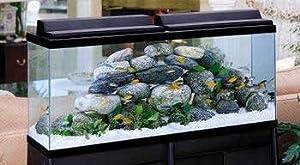 Aquarium starter kits bio wheel 55 gallon for 55 gallon fish tank led light hood