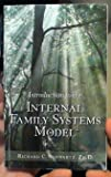 Introduction to the Internal Family Systems Model