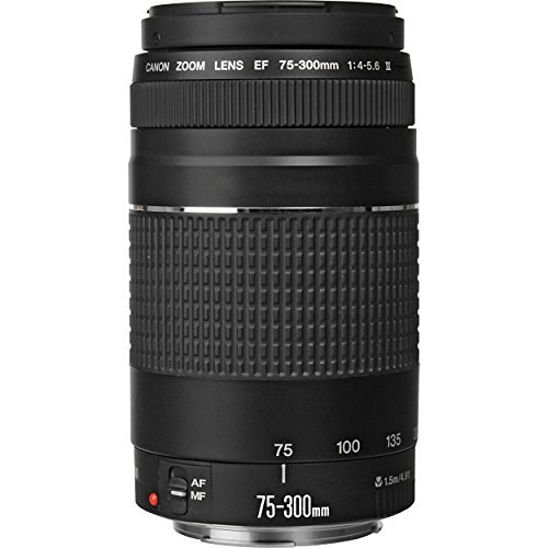 Canon EF 75-300mm f/4-5.6 III Telephoto Zoom Lens for Canon EOS 7D, 60D, EOS 70D Rebel SL1, T1i, T2i, T3, T3i, T4i, T5, T5i, XS, XSi, XT & XTi Digital SLR Cameras with Accessories (Canon Long Range Lens compare prices)