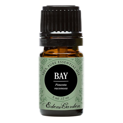 Bay 100% Pure Therapeutic Grade Essential Oil by Edens Garden- 5 ml