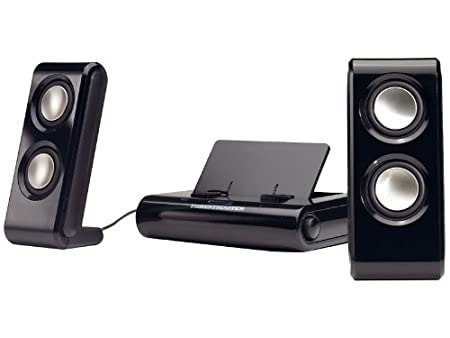 2-IN-1 Sound System for Psp